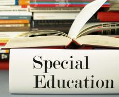 State education boards typically create the requirements for special education teacher training.
