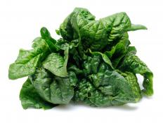 Spinach, which can be served with penne pasta.