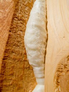 Spray foam insulation may help provide a noise barrier.