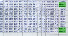 A household budget spreadsheet is an example of a financial model.