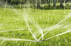 Many people choose sprinklers to water their grass.