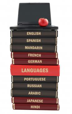 A Portuguese translator will frequently work with reference books.