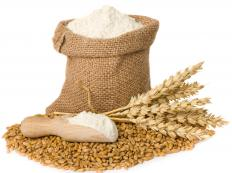 Those who consume limited diets heavy in starches, such as wheat and barley, might be more likely to develop kwashiorkor.