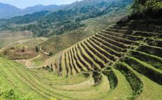 In mountainous terrain, terrace farming helps prevent soil erosion.