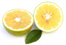 A bergamot orange, which is often used to make aromatherapy scents.