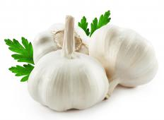 Elephant garlic is a variety of garlic that has very large cloves.