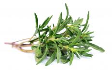 Thyme leaves may be used as a flavoring for stews.