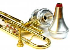 The sound of shehnai can be described as a cross between an oboe and a muted trumpet.