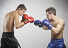A boxing manager is responsible for setting up boxing matches with opponents.