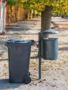 Coyotes will eat garbage, and often rely on trash cans for nutrition.