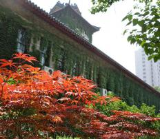 China is home to the oldest university in the world, the University of Nanjing.