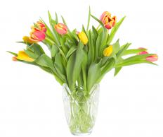 A crystal vase with tulips.