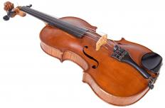 The viola is slightly larger than -- and is tuned at a lower pitch than -- the violin.