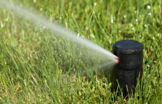 A yard sprinkler.