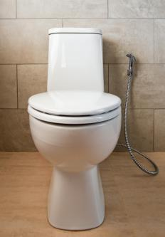 Handheld sprayer attachments are available to turn a standard toilet into a bidet.