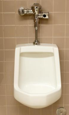 Urinals may utilize flushometers to help save water.