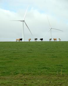 Private companies work with the federal government to create energy sources, such as wind farms.