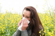 Allergies may cause post-nasal drip and lead to swelling and congestion of the nose.