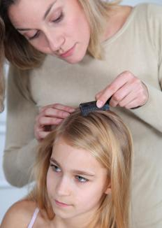 Nits and adult head lice can be removed with a special comb.