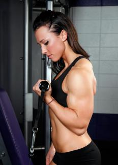 In a bicep curl, the biceps work as the agonist, while the triceps are the antagonist.