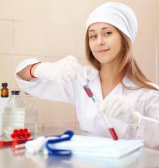 A scientist may perform studies on blood samples.