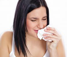 Sputum or phlegm is expelled from the body by sneezing and coughing.