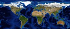 Surrounding nearly all continents is a shallow extension of that landmass known as the continental shelf.