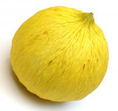 Blossom end rot damages melons, like the casaba, along with tomatoes, peppers, and eggplants.