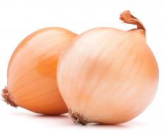 Dried onion is made by removing all the moisture from an onion.