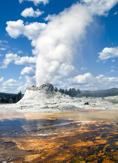 Yellow National Park has some geysers that are taller than Old Faithful.