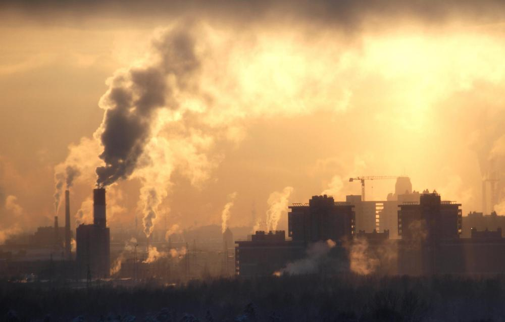 Environmental accountants analyze financial data relating to pollution.