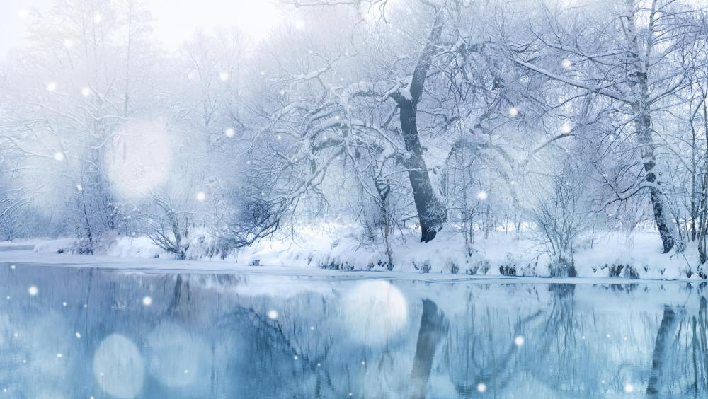 snowfall-on-lake-and-trees.jpg
