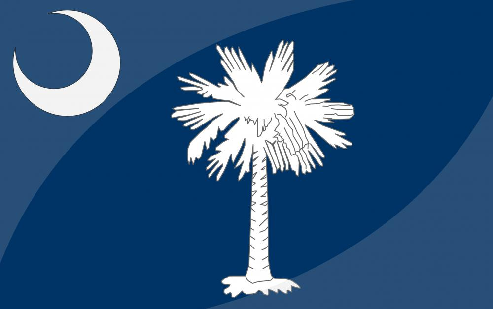 The South Carolina state flag.