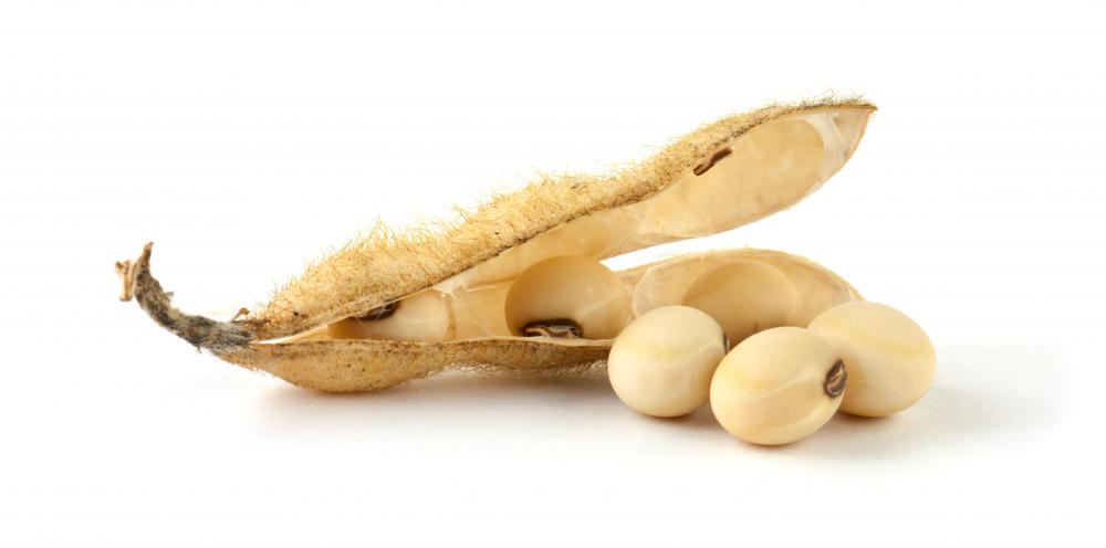 Soybeans are used to produce TVP.