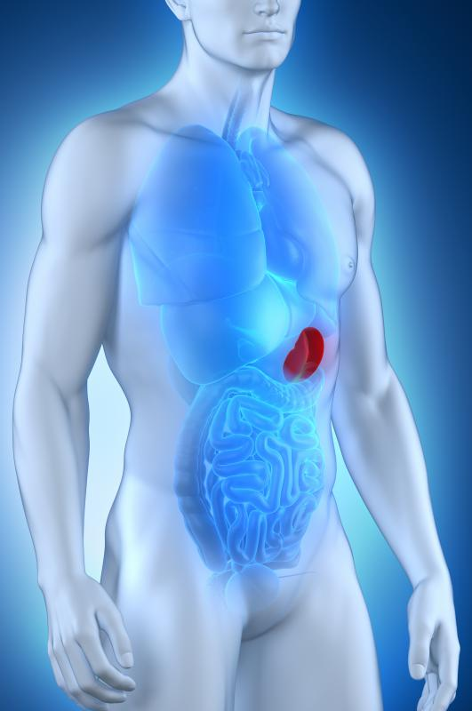 People with CGD may suffer from recurring infections that result in inflammation of the spleen.