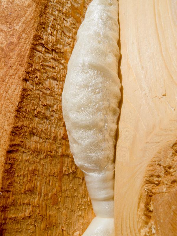 Foam insulation increases energy efficiency.