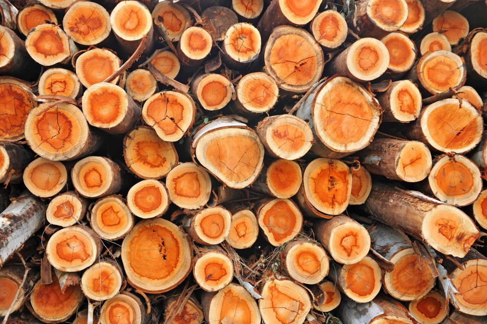What Is Wood Preservative With Picture
