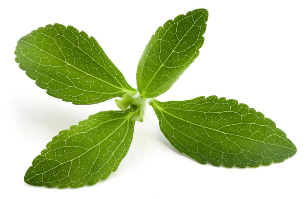 Stevia is a plant native to North and South America.