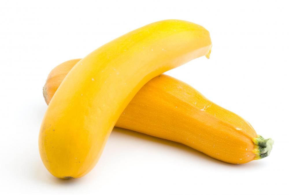Yellow or summer squash are courgettes.