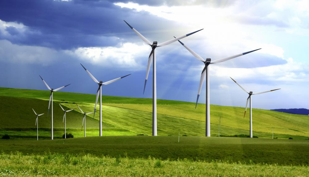 A wind farm that's used to generate sustainable energy.