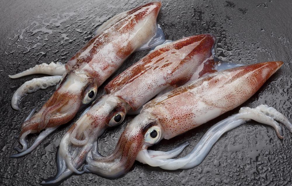 Squid is a popular seafood sashimi.