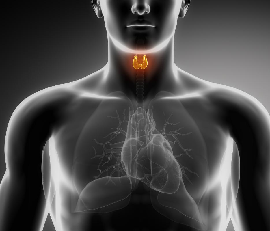 Cholinergic drugs are not recommended for patients with thyroid disorders.