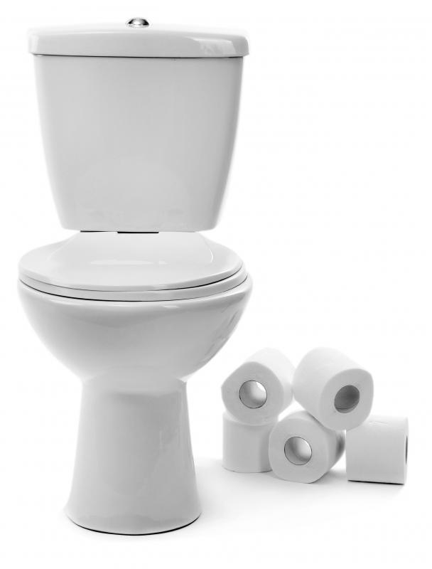 Many toilets are made of white porcelain.