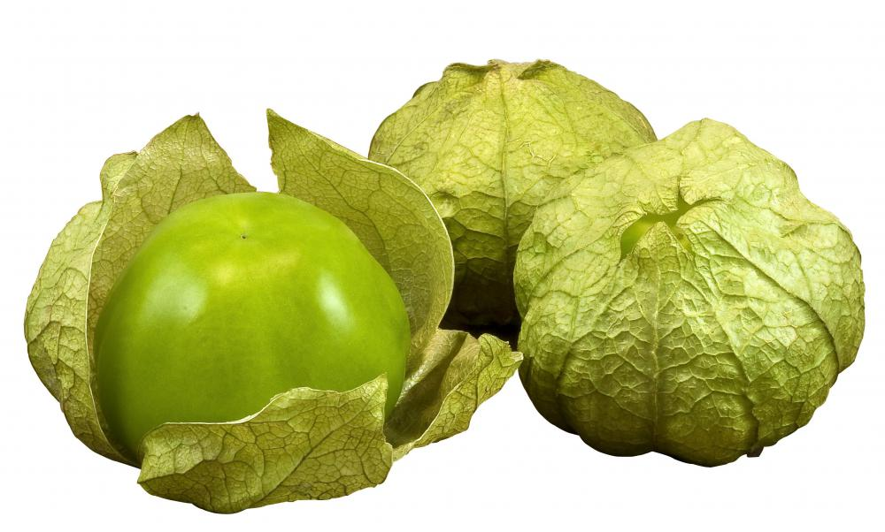 Tomatillos belong to the nightshade family of plants, as do tomatoes ...