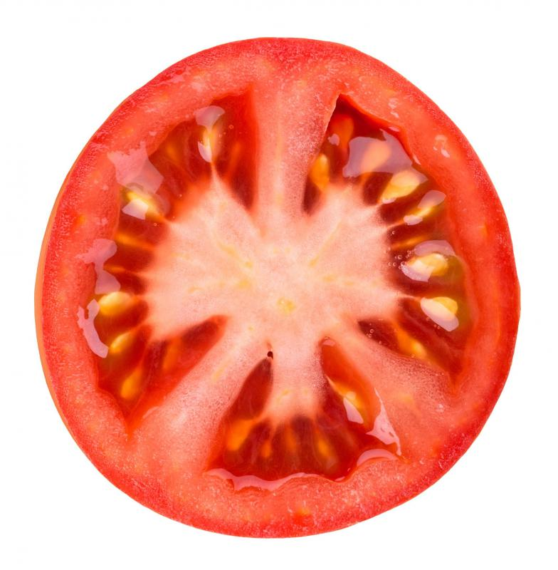 Tomatoes are often grown using aquaponics.