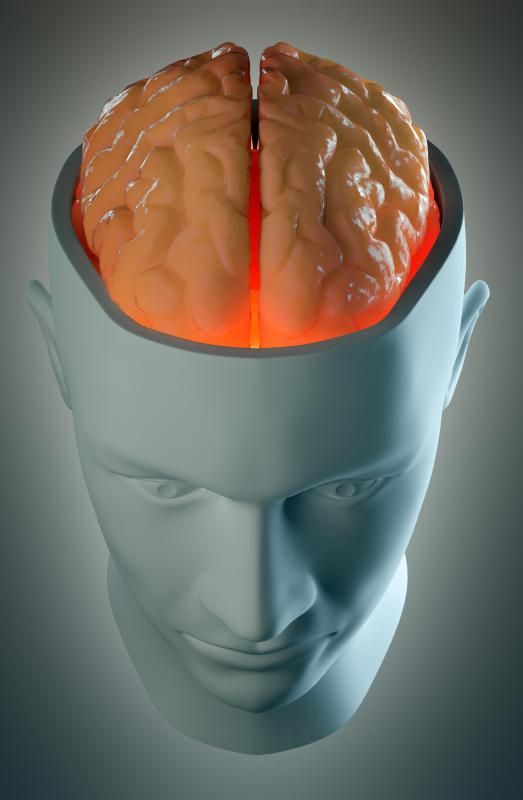 Brain lateralization refers to the different functions carried out by the left and right hemispheres of the brain.