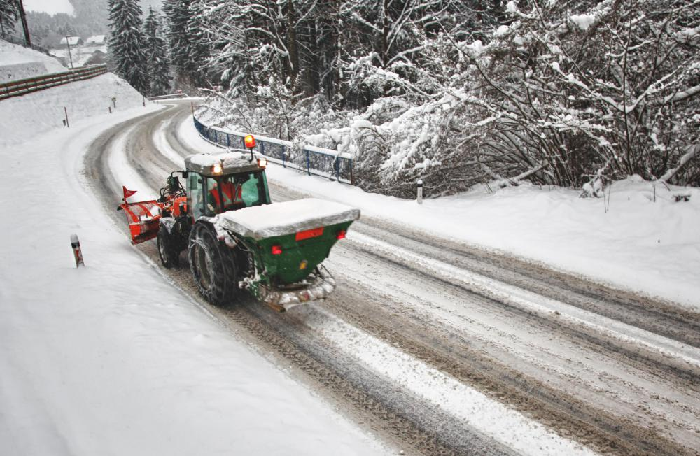Using sand instead of salt when deicing roads can reduce the damage to nearby maple trees.
