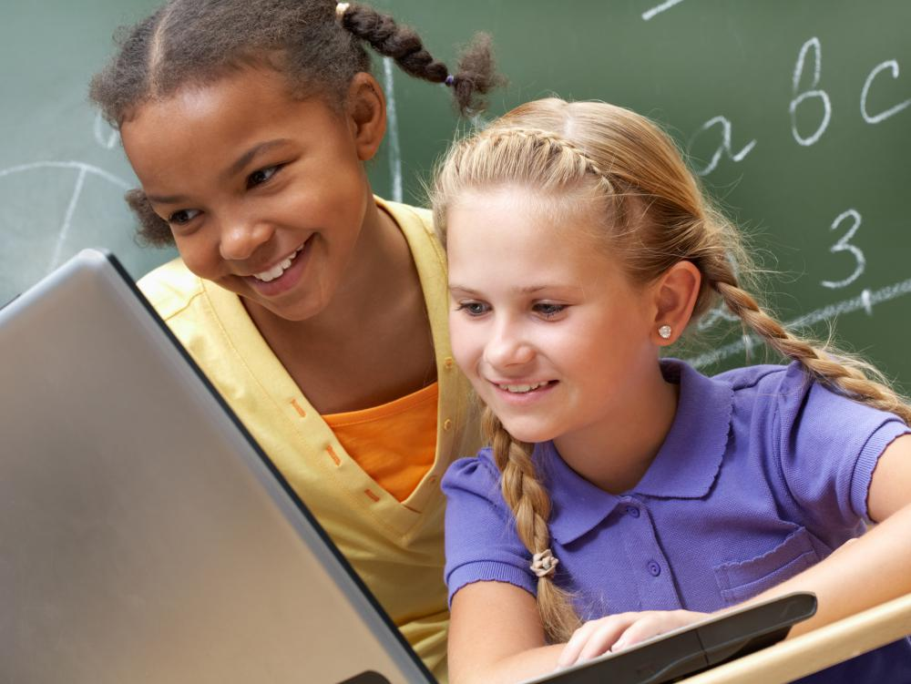 Online resources may be used in addition to traditional learning tools in a classroom.