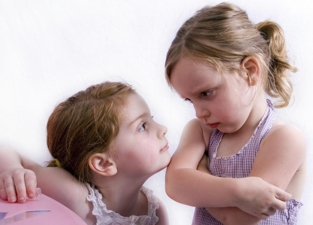 Family counselors may specialize in sibling rivalry problems.