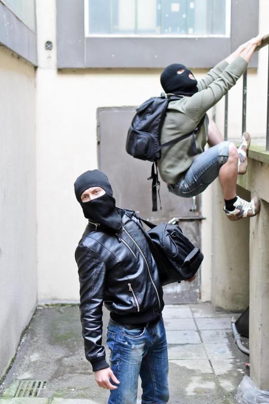 A surveillance system can deter or aid in the capture of burglars.